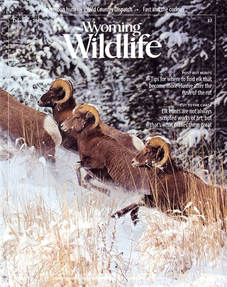 Wyoming Wildlife Cover - 11/1/2017