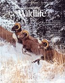 Wyoming Wildlife Magazine 11/1/2017