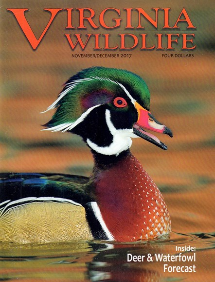 Virginia Wildlife Cover - 11/1/2017