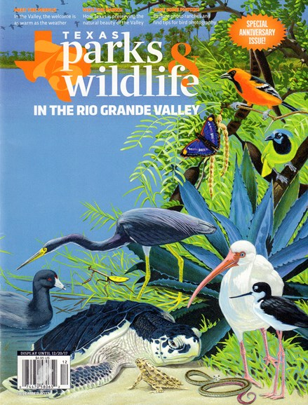 Texas Parks & Wildlife Cover - 12/1/2017