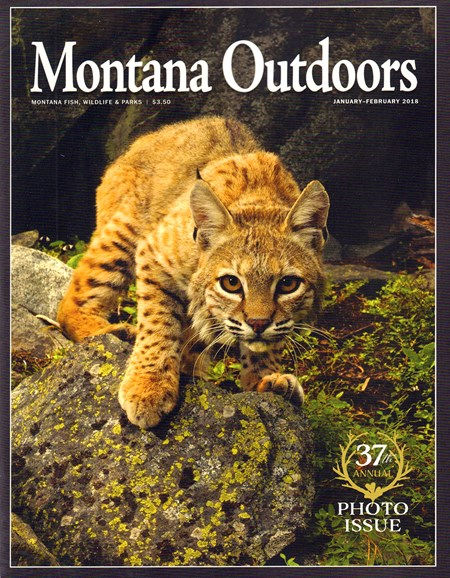 Montana Outdoors Cover - 1/1/2018