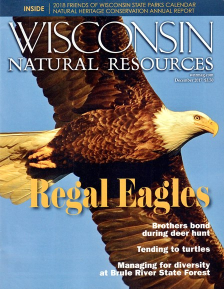 Wisconsin Natural Resources Cover - 12/1/2017