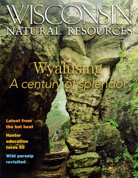 Wisconsin Natural Resources Cover - 6/1/2017