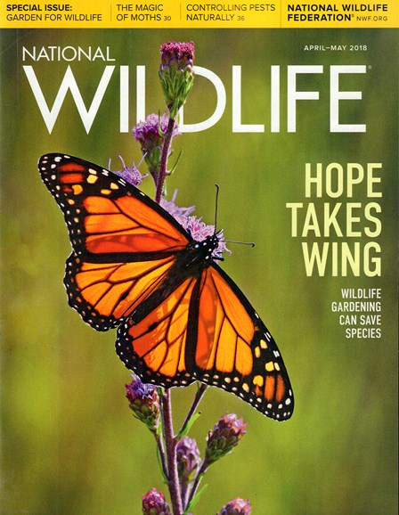 National Wildlife Cover - 4/1/2018