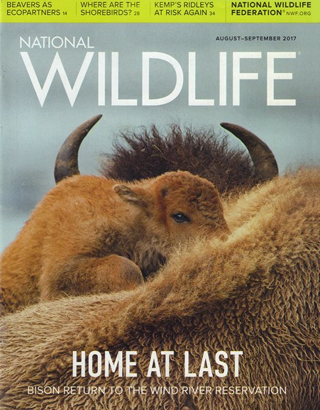 National Wildlife Cover - 8/1/2017