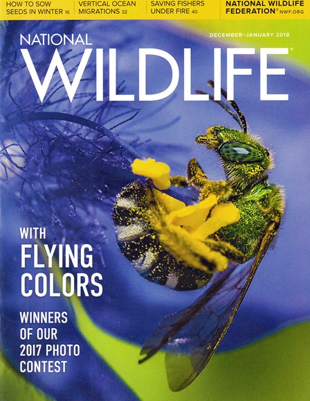 National Wildlife Cover - 12/1/2017