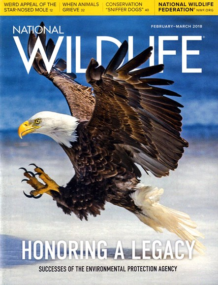 National Wildlife Cover - 2/1/2018