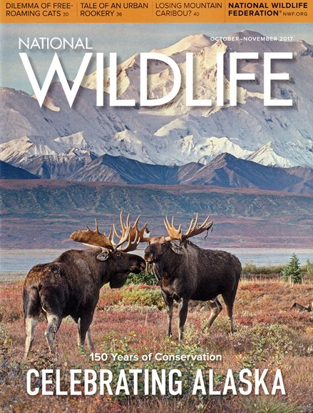 National Wildlife Cover - 11/1/2017