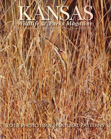 Kansas Wildlife & Parks Cover - 1/1/2018