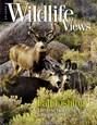 Arizona Wildlife Views Magazine | 9/2017 Cover