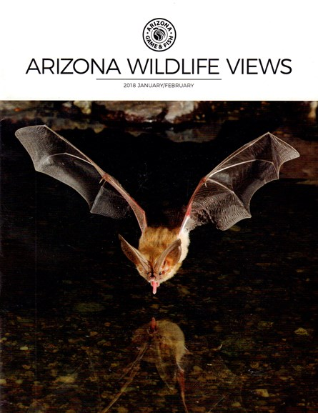 Arizona Wildlife Views Cover - 1/1/2018