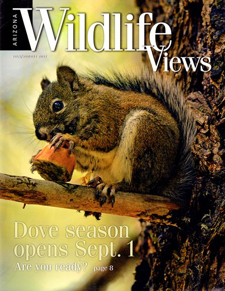 Arizona Wildlife Views Cover - 7/1/2017