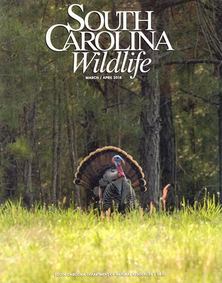 South Carolina Wildlife Cover - 3/1/2018