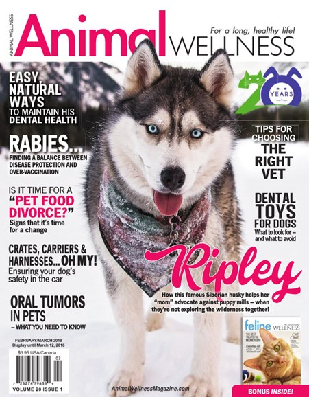 Animal Wellness Cover - 2/1/2018