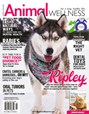 Animal Wellness Magazine | 2/2018 Cover