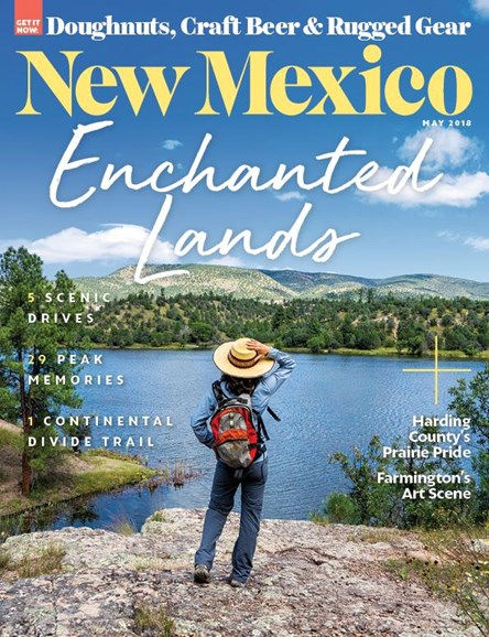 New Mexico Cover - 5/1/2018