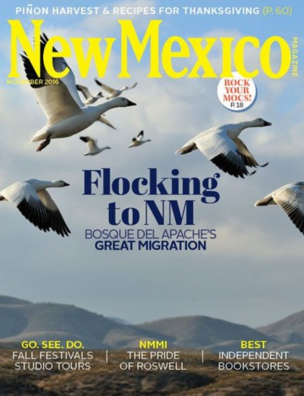 New Mexico Cover - 11/1/2016