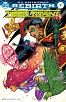 Teen Titans Comic 1/1/2017