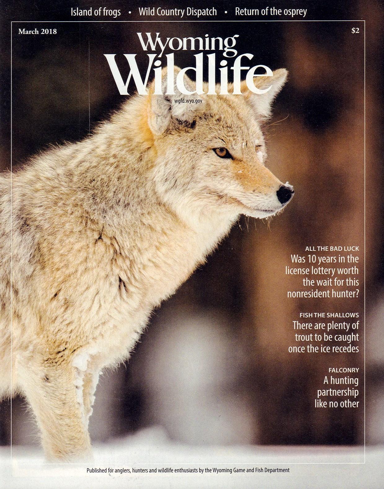 Wyoming Wildlife Print Magazine Infonet Systems Inc. Unique ...