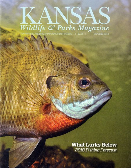 Kansas Wildlife & Parks Cover - 5/1/2018