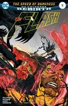 The Flash Comic 1/15/2017