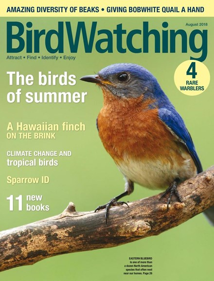 Bird Watching Cover - 7/1/2018