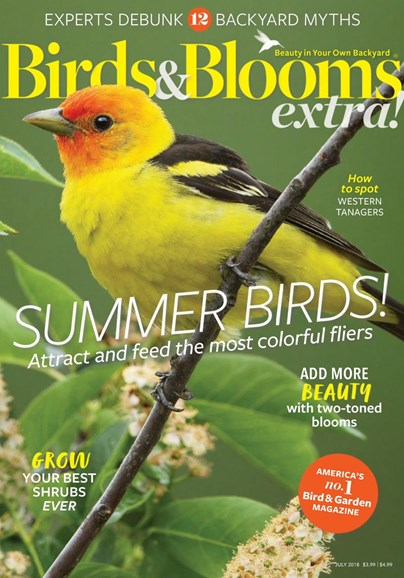Birds & Blooms Extra Cover - 7/1/2018