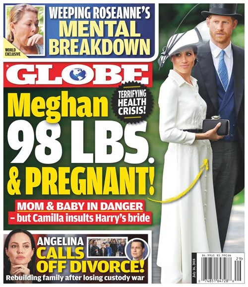 Globe Cover - 7/16/2018