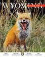 Wyoming Wildlife Magazine | 7/2018 Cover
