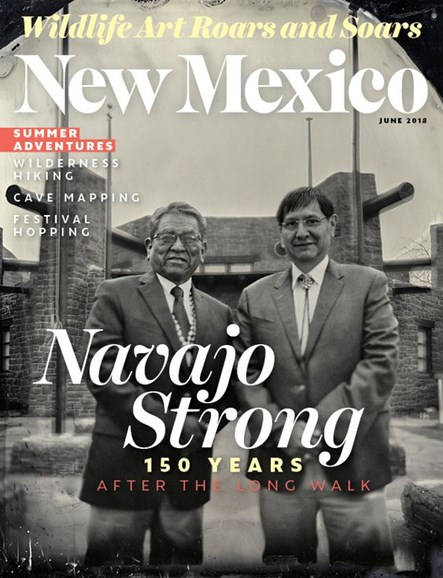 New Mexico Cover - 6/1/2018