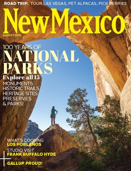 New Mexico Cover - 8/1/2016