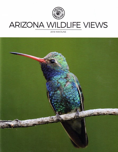 Arizona Wildlife Views Cover - 5/1/2018