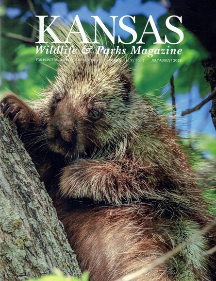 Kansas Wildlife & Parks Cover - 7/1/2018