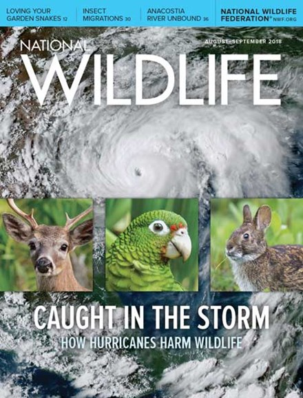 National Wildlife Cover - 8/1/2018