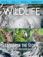 National Wildlife Magazine | 8/2018 Cover