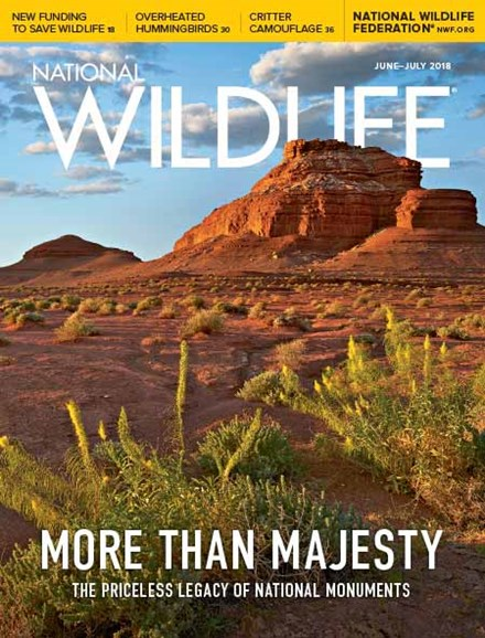 National Wildlife Cover - 6/1/2018
