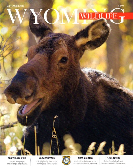 Wyoming Wildlife Cover - 9/1/2018