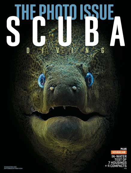 Scuba Diving Cover - 9/1/2018