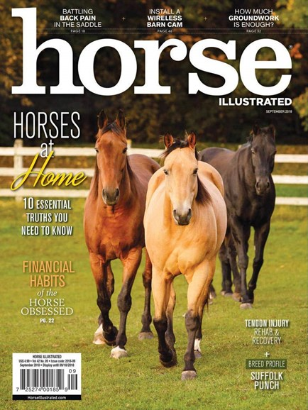 Horse Illustrated Cover - 9/1/2018