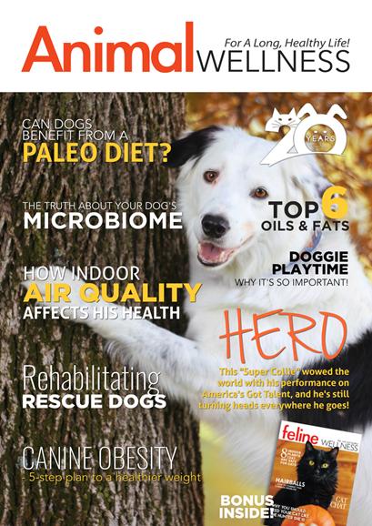 Animal Wellness Cover - 10/1/2018