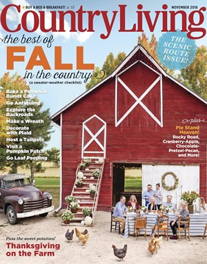 Country Living Magazine 11 2018 Cover