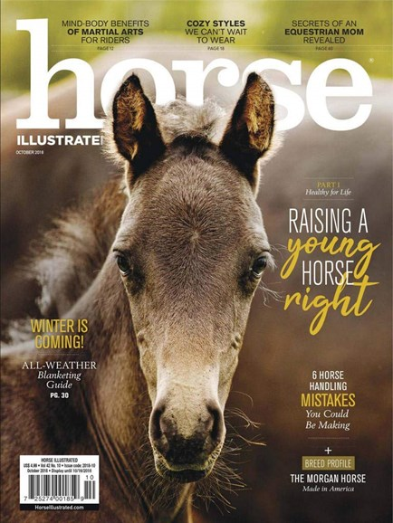 Horse Illustrated Cover - 10/1/2018