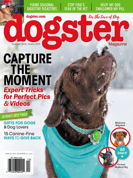 Dogster Cover - 12/1/2018