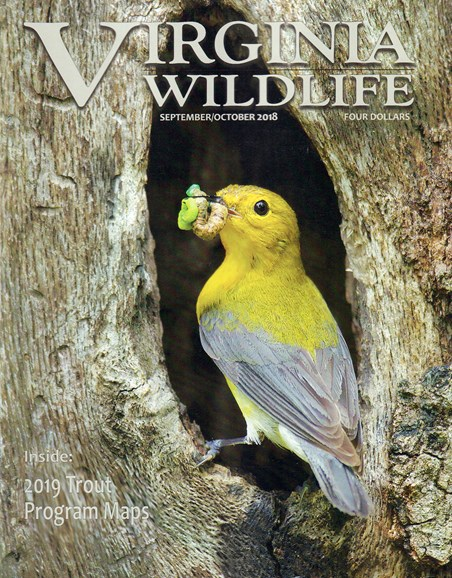 Virginia Wildlife Cover - 9/1/2018