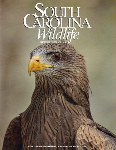 South Carolina Wildlife Cover - 9/1/2018