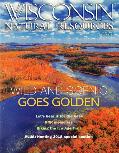 Wisconsin Natural Resources Cover - 9/1/2018