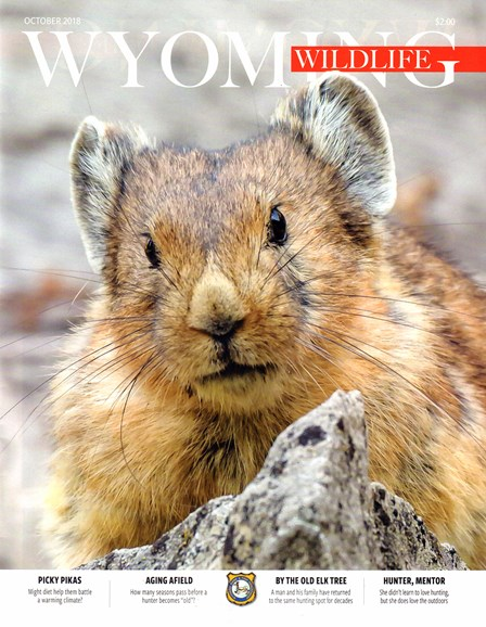 Wyoming Wildlife Cover - 10/1/2018