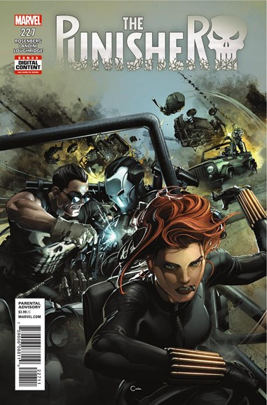 The Punisher Cover - 9/1/2018