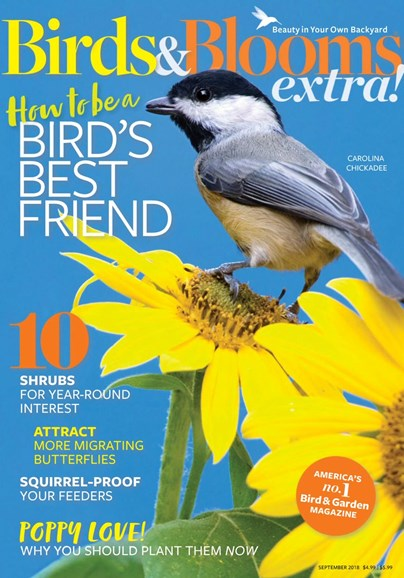 Birds & Blooms Extra Cover - 9/1/2018