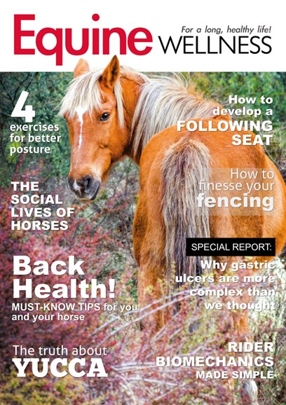 Equine Wellness Cover - 10/1/2018